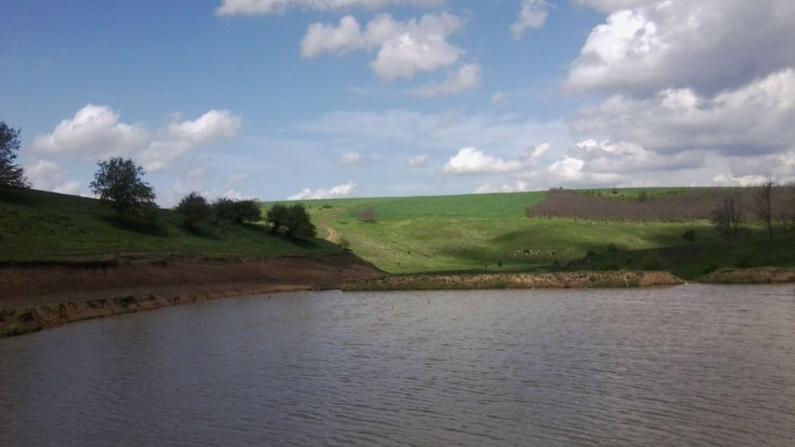 с. Бистра, община Алфатар