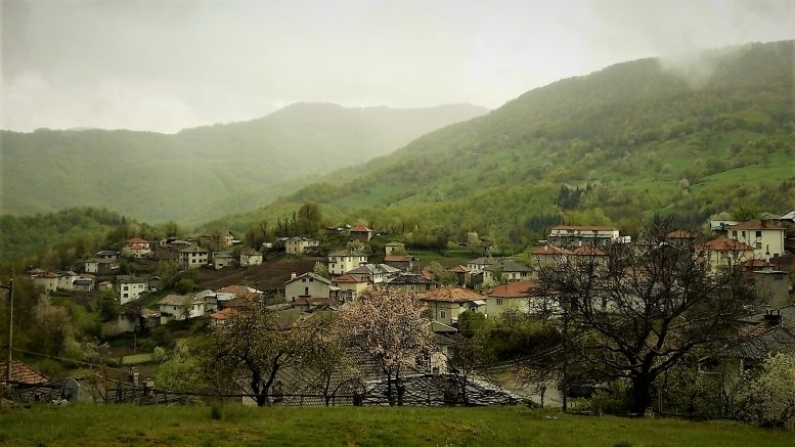 с. Поляна, община Ситово